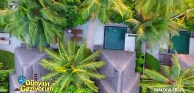 Plaj üstü villa tarzı otellerde tropikal meyveleri tanıyın