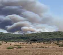 Bodrum'daki orman yangınından ilk görüntüler