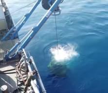 Kurtaran 2021 Denizaltı Arama Kurtarma Tatbikatı