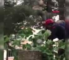 Budamak için çıktığı ağaçta fenalaştı, itfaiyeciler kurtardı