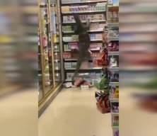 Korkunç anlar kamerada: Dev bir kertenkele markete girdi!