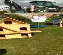 Sokak hayvanları için dikkat çeken proje: Kedi köyü