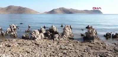 Van Gölü'nde dünyanın en büyük mikrobiyalitleri gün yüzüne çıktı