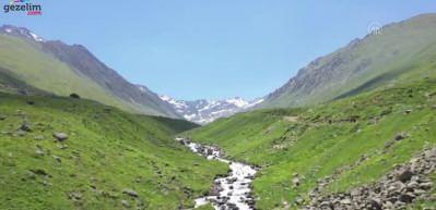 Yeşilin binbir tonu Kaçkar Dağları