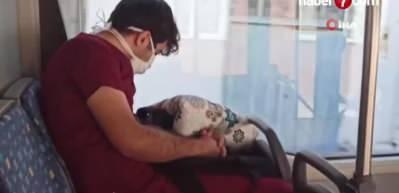 Minnettarız: Sağlık çalışanı yoğun mesai sonrası otobüste uyuyakaldı