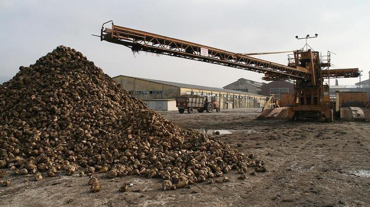 Türkiye Şeker Fabrikaları AŞ'den 'stok' açıklaması