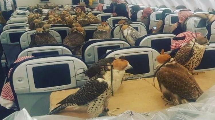 Uçak sevdası bakın ne yaptırdı!