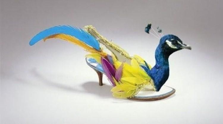 Giyebileceğiniz en tuhaf ayakkabılar!