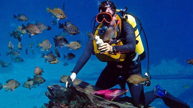 Astım hastaları tüple denize dalmayın!