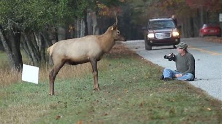Fotoğrafını çeken belgeselciyi pişman etti