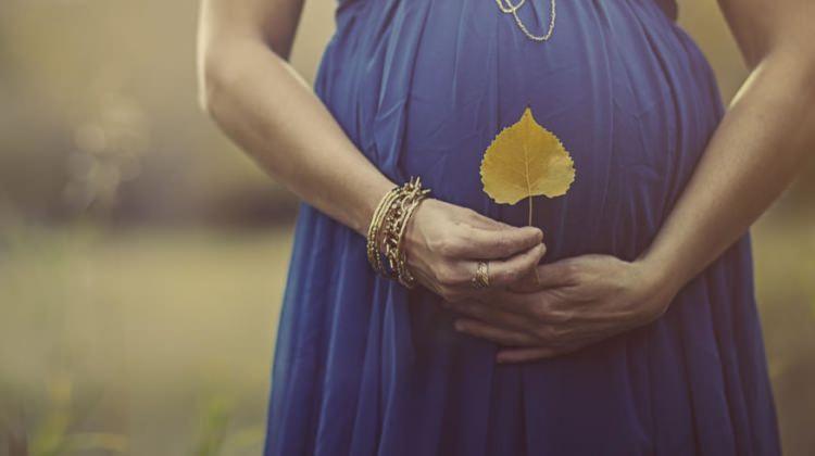Sonbahar mevsiminde hamileler nasıl beslenmeli?
