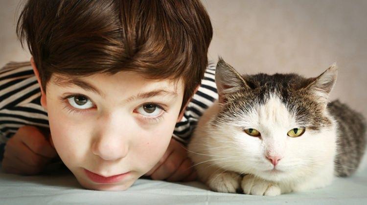 Evcil hayvanların çocuklardaki etkisi nedir?