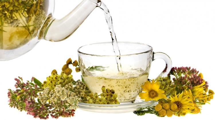 Doğal antideprasan 'sarı kantaron çayı'nın faydaları nelerdir?