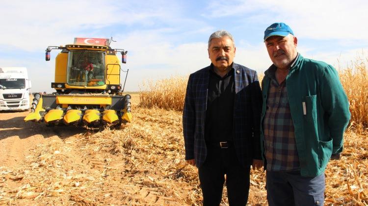 Yılda 600 bin tona yakın mısır üretiliyor!