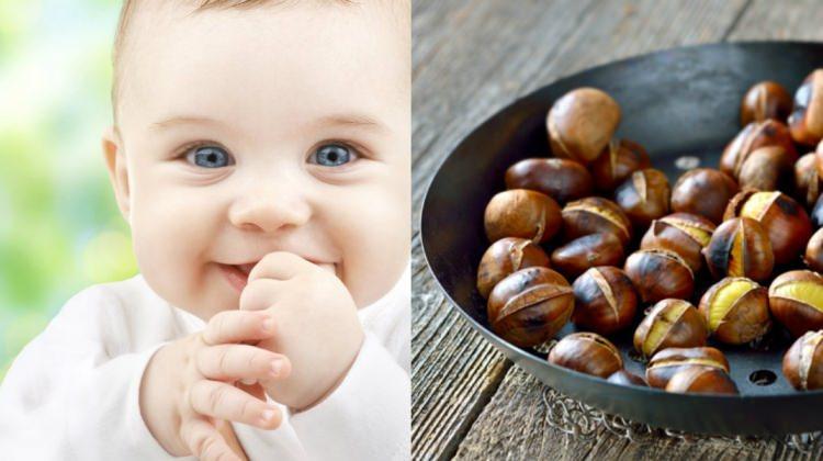 Saraçoğlu kestanenin faydalarını anlattı! Kaç aylık bebek kestane yiyebilir? Kestane bebekte gaz yapar mı?