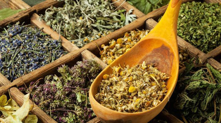 Kış aylarında hangi bitki çayları tüketilmeli?