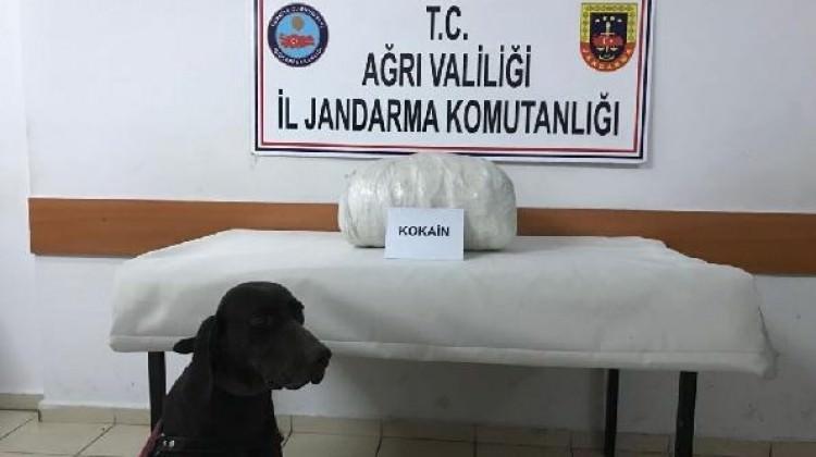 Ağrı'da 18.5 kilo kokain ele geçirildi