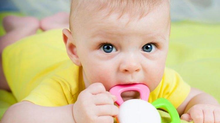 Bebekler için diş kaşıyıcıları