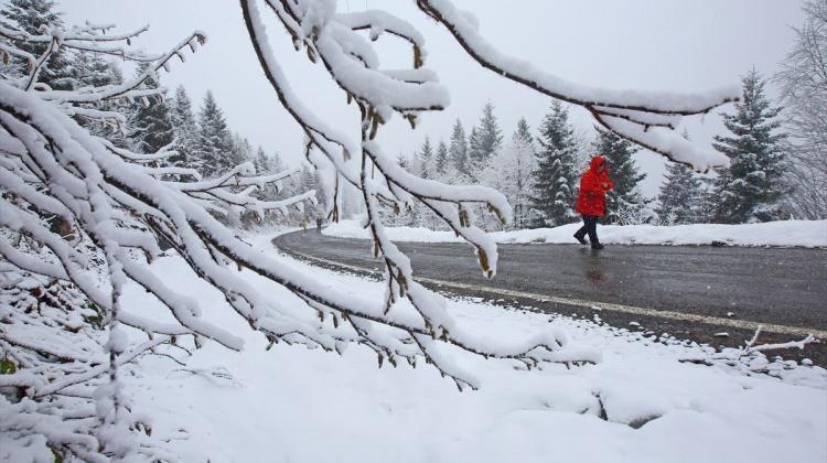 Yaylalardaki kar yağışı fotoğrafçıların ilgi odağı