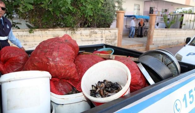 Antalya'da midye operasyonu