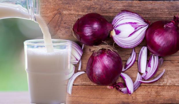 Mor soğanın faydaları nelerdir? Mor soğanı sütle karıştırıp içerseniz ne olur?