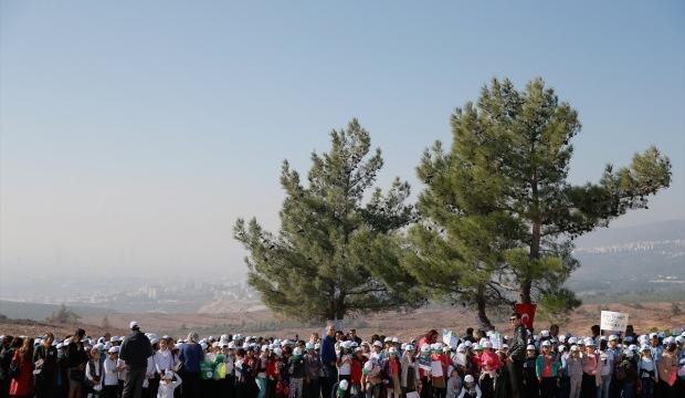 İzmir'de 461 bin fidan dikilecek