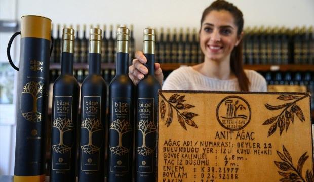 Asırlık zeytinlerin yağı 200 liraya satılıyor