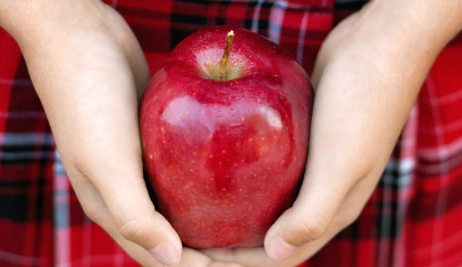 Çürük elmalar nasıl değerlendirilir?