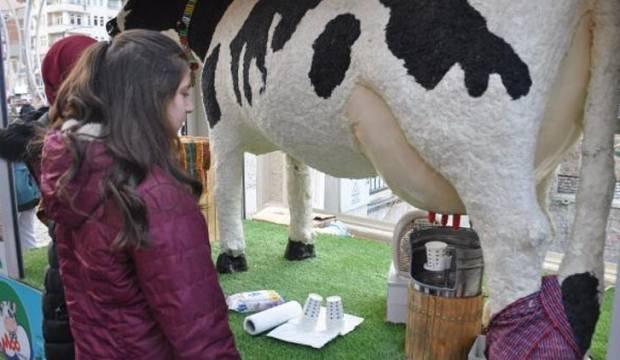 Akıllı inek aromalı süt veriyor!