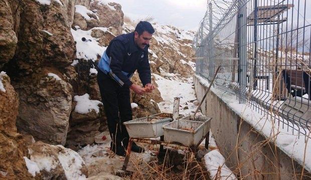 Edremit'te sokak ve yaban hayvanları için doğaya yem bırakıldı