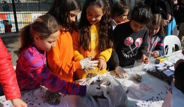 Öğrencilerden sokak hayvanlarını doyuran etkinlik