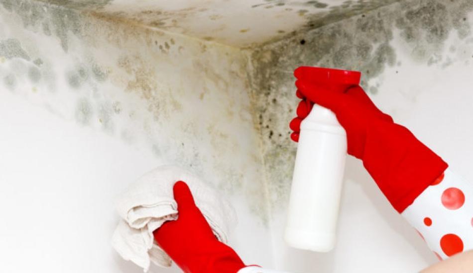 Tavan lekeleri nasıl çıkar? Tavan temizlemenin yolları