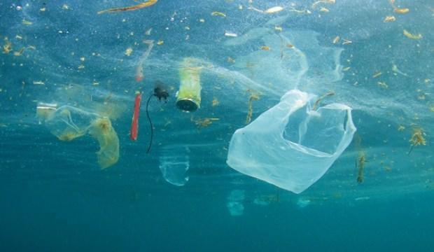 Bir yılda 50 bin parça plastik yiyoruz!