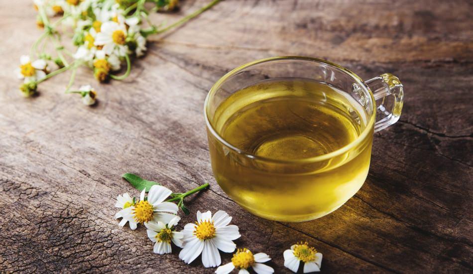 Papatyanın faydaları nelerdir? Düzenli bir bardak fincan papatya çayı içerseniz...