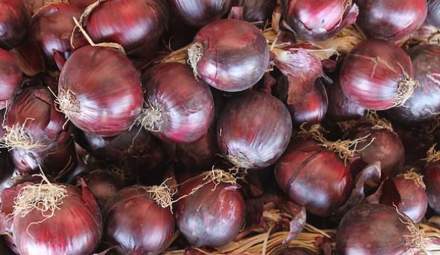 Soğan fiyatı yüzde 27 düştü