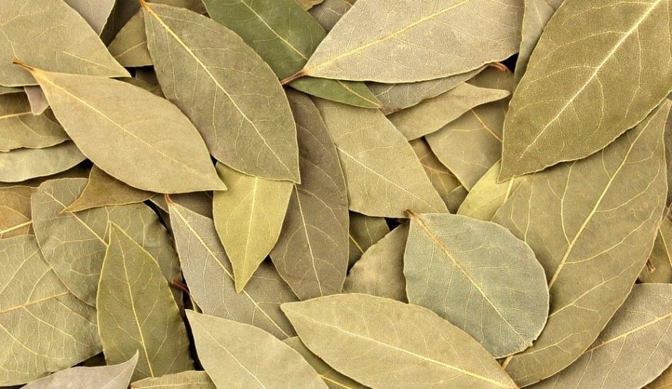 Defne yaprağının faydaları nelerdir? Defne ve limon karışımı! Defne yaprağı çayı...