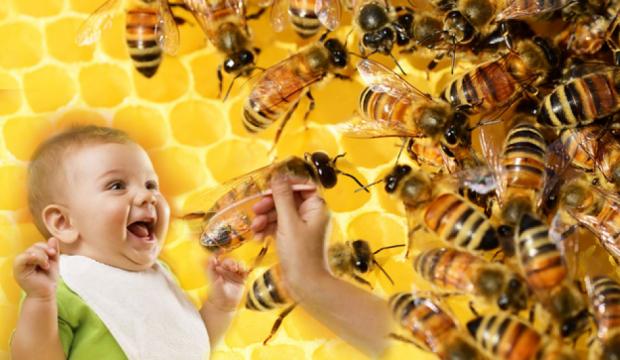 Bebeklere bal nasıl verilmeli? 1 yaşından önce verilmemesi gerekenler