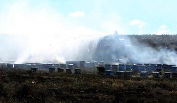 Kayseri'de korkunç yangın! Yüz binlerce arı telef oldu