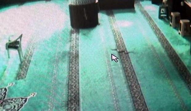 Camiye giren yılanı çıkartmak için 3 gün uğraştılar