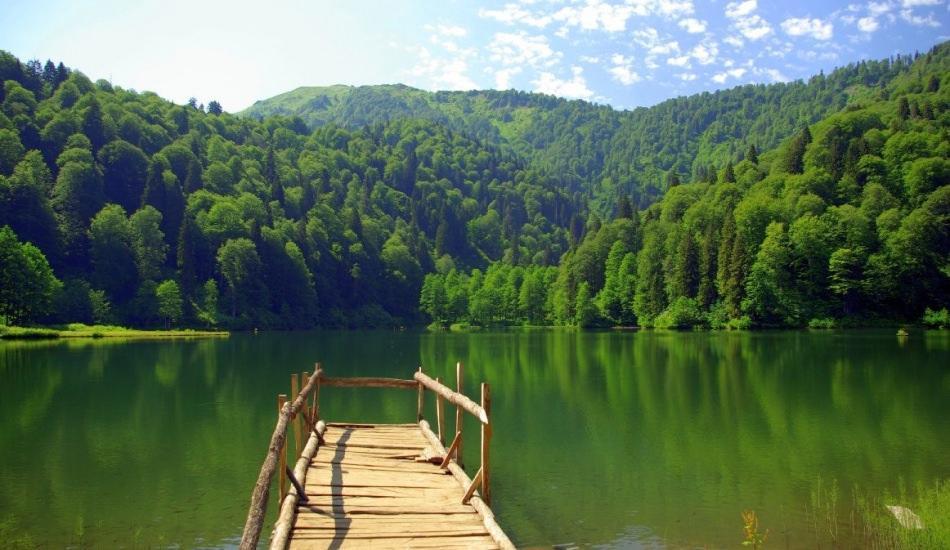 Trabzon turizmi lavanta bahçeleriyle canlandıracak!