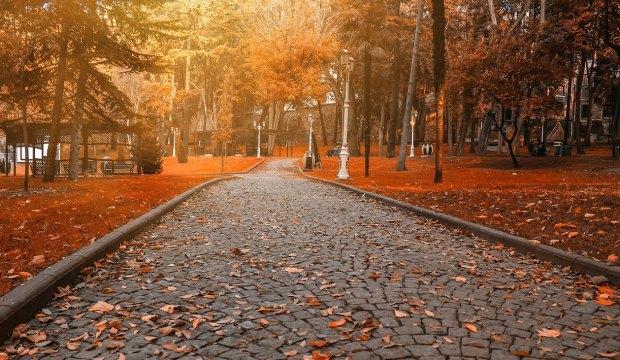 İstanbul'un en güzel sonbahar rotaları