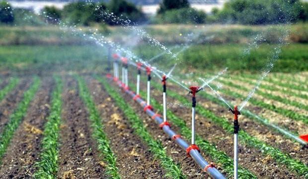 İzmir'de sulu tarım ile 415 milyon TL gelir