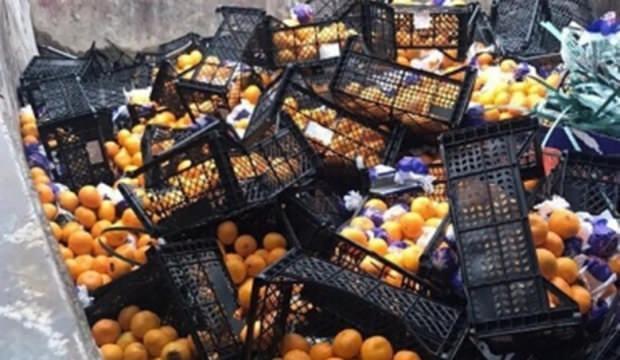 21 ton mandalina yanlış etiket kurbanı oldu