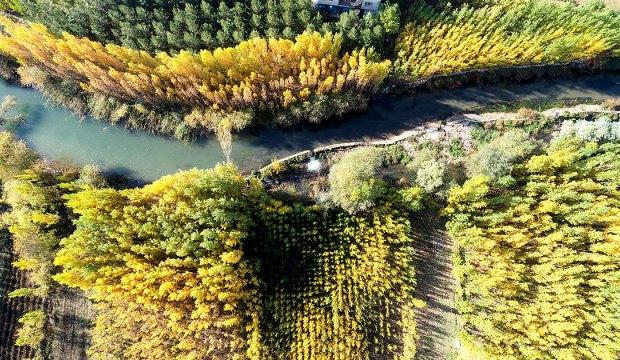 Tarih ve doğanın buluştuğu Savur'da sonbahar