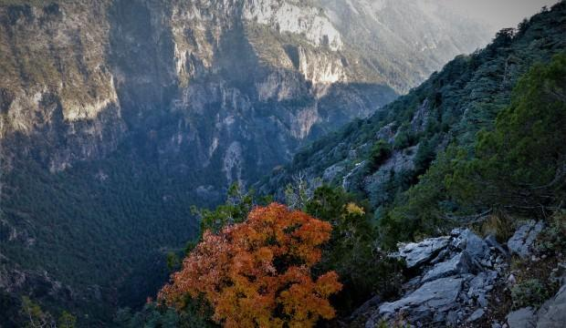 Karanlıkdere Kanyonu sonbaharda görsel şölen oluşturuyor