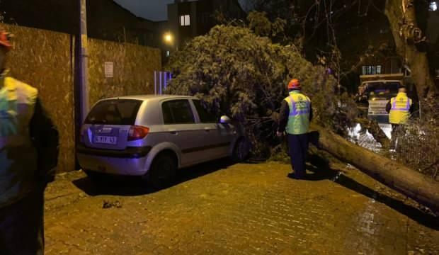 İstanbul'da yağış ve rüzgar hayatı felç etti