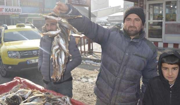 Eksi 25 derecede böyle balık avlıyor