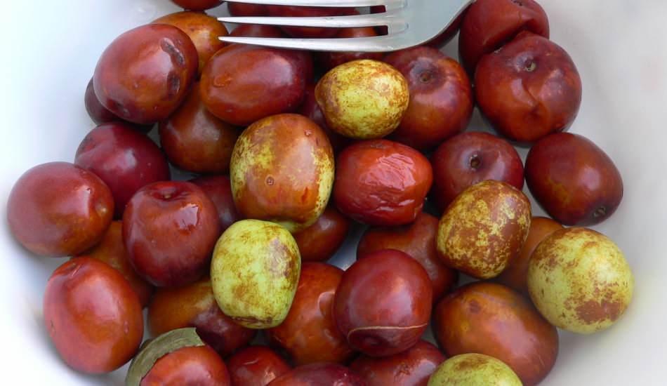 Hünnap meyvesinin faydaları nelerdir? Hünnap çayı nasıl yapılır? Hünnap nasıl tüketilir?