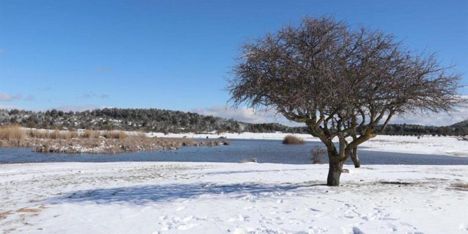 180 kuş türü bulunan Yayla Gölü, karla bir başka güzel