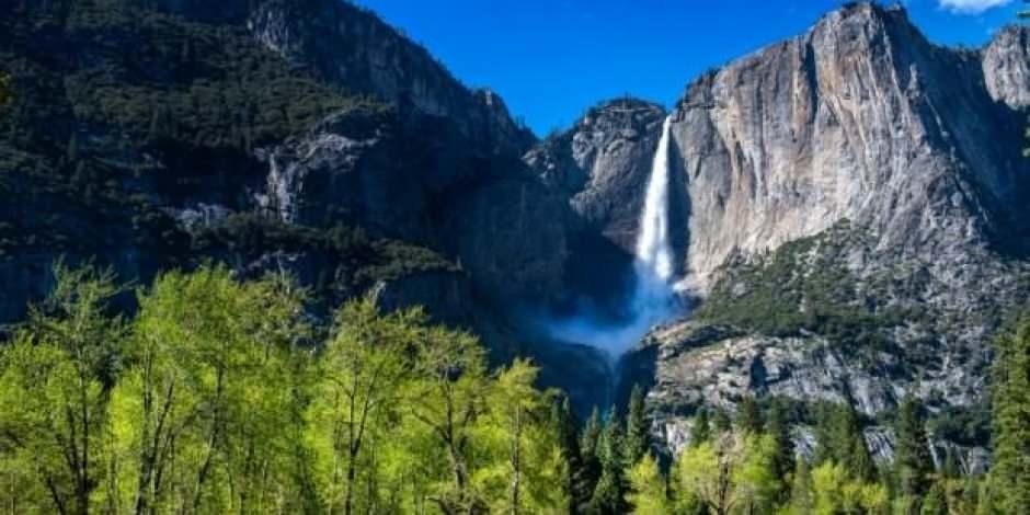 Yosemite National Park nerede? Amerika'nın kuzeydeki en ünlü parkı